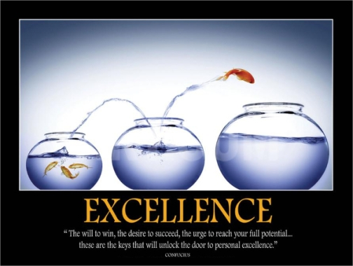 Excellence Fish