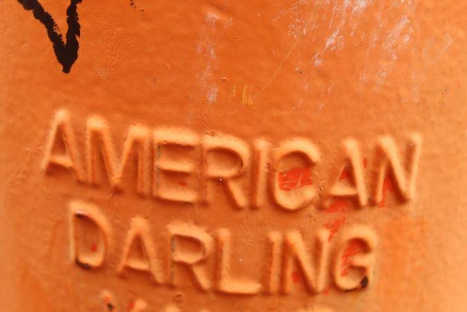 AAmericanDarling